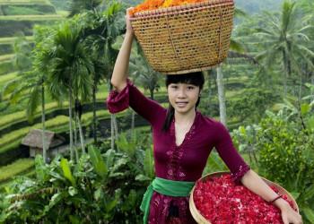 Frau mit Blumen in Indonesien