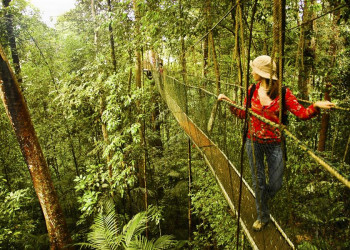 Der Mount-Kinabalu-Nationalpark auf Borneo