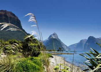 Panorama im Milford Sound auf der Südinsel Neuseelands