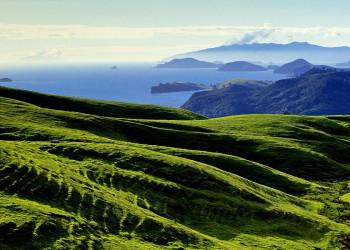 Die Coromandel-Halbinsel auf der Nordinsel Neuseelands