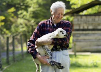 Schafzüchter mit Schaf, Neuseeland