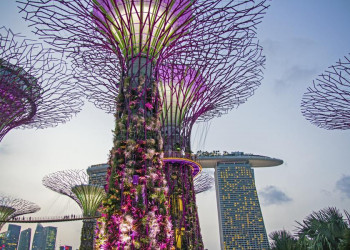 Marina Bay Sands und Gardens by the Bay in Singapur (von außen )