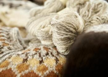 Wolle der Islandschafe