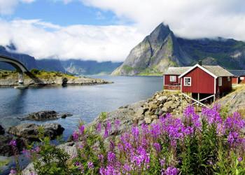 Lofoten wie aus dem Bilderbuch, rote Rorbuer, schroffe Felsen, die aus dem Nordmeer steigen
