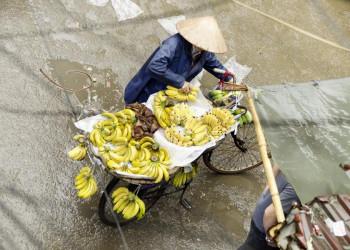 Obstverkäuferin in der Altstadt von Hanoi