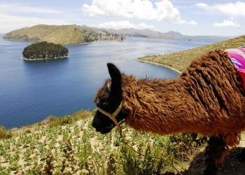 Blick auf den Titicacasee zwischen Peru und Bolivien