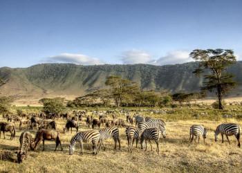 Grzimek nannte ihn eines der Weltwunder - der Ngorongoro-Krater in Tansania
