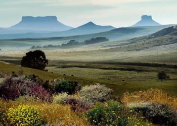 Südafrika hat nicht nur in Kapstadt einen Tafelberg zu bieten