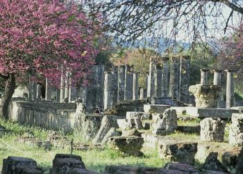 Ein Highlight auf dem Peloponnes: die Ausgrabungen von Olympia