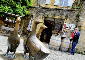 Gänse werden im Périgord als Denkmal und auf dem Tisch geschätzt