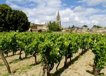 Blick über die Weinberge nach St-Emilion in Südwestfrankreich