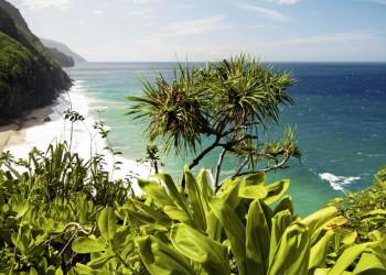 Strand an der Pazifikküste auf Hawaii