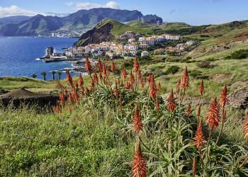 Malerische Küstenlandschaft auf der Insel des ewigen Frühlings