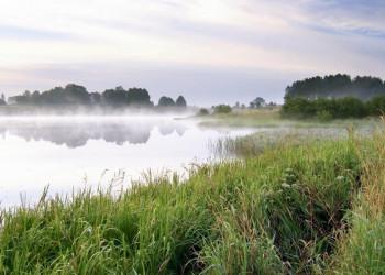 Mystische Stimmung an einem der vielen masurischen Seen