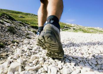 Das richtige Profil für unsere Wander-Studienreise!