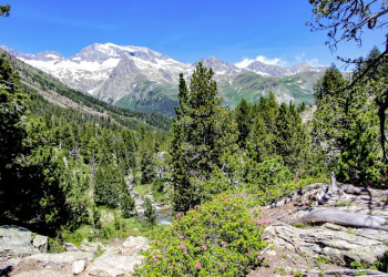Berglandschaft der Pyrenäen