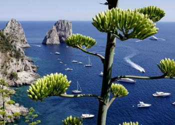 Weiße Boote, blaues Meer und die Faraglioni vor Capri