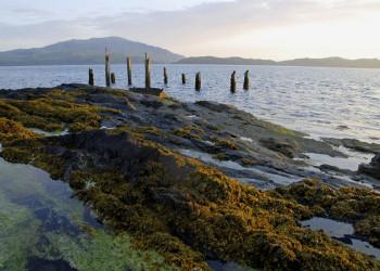 Die Highlands treffen aufs Meer - in der Nähe von Oban