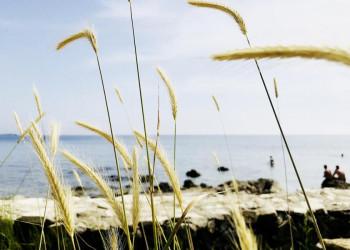 Küstenimpressionen und Badefreuden im kroatischen Istrien
